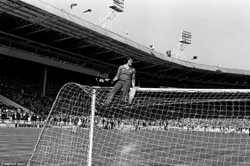 A Manchester United fan celebrates his team's 1977 FA Cup Final victory over Liverpool from the top of the crossbar