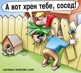завистливый сосед